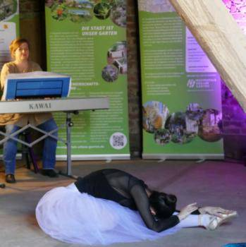 Gartenkultur: Der sterbende Schwan